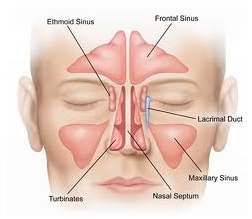 Rhinoplasty and airway obstruction